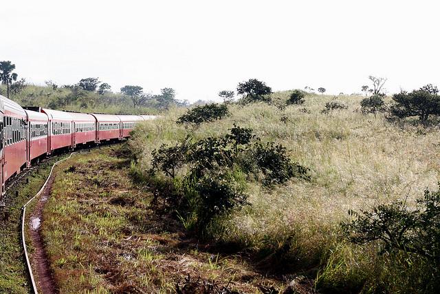 chronique-train-de-brousse-aristopathe-jewanda