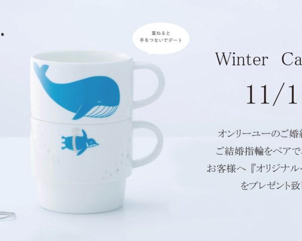 2019 Winter Campaign