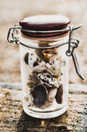 seashells in glass bottle sitting on wood