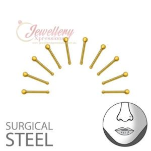 2MM | 10PCS Gold Colour 316L Surgical Grade Stainless Steel Ball Nose Studs