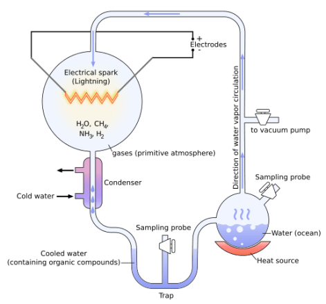 Diagram of the Miller-Urey Experiment