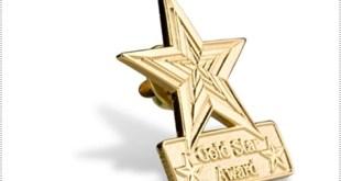 Gold Star Award Pins