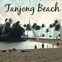 Picnic at Tanjong Beach