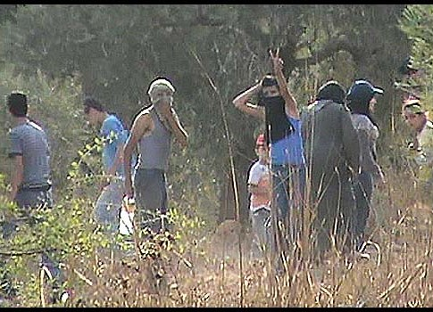 Arab olive pickers attacked Jews with rocks on Shabbat.