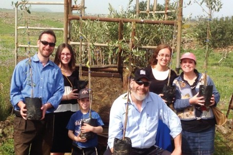 Planting Trees on the Golan
