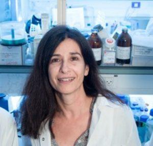 Dr. Rachel Lichtenstein