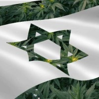 Knesset Decriminalizes Private Use of Cannabis