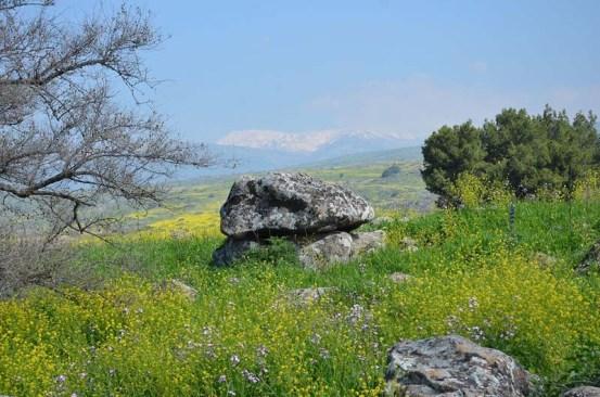 Le dolmen de 4000 ans.  / Crédit photo: Gonen Sharon, Collège Tel Hai.
