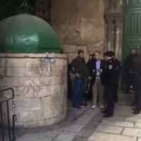 Watch: Two US Congressmen Detained on Temple Mount for Picking Up Olive Branch