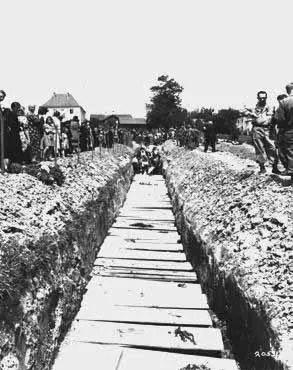 Holocaust Horror