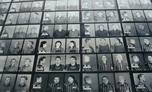 Auschwitz List Prisoner