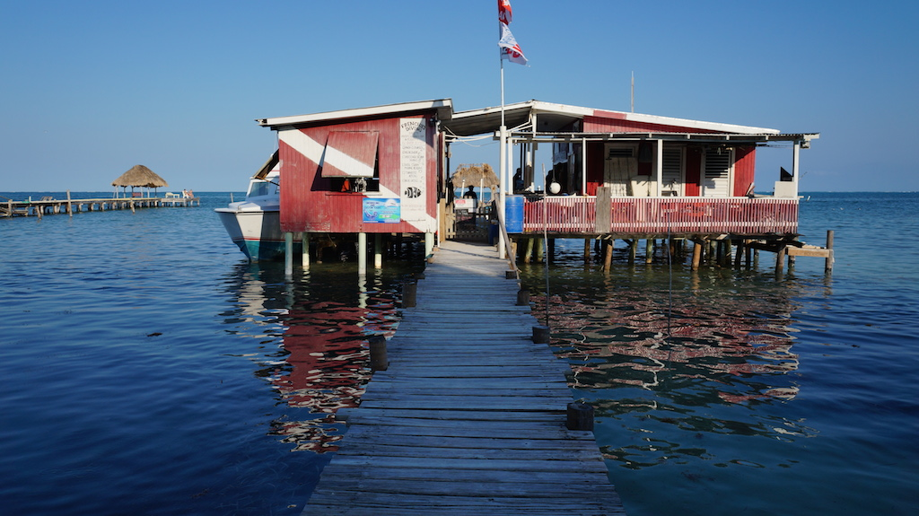 How to choose the right dive company for diving at the Blue Hole in Belize