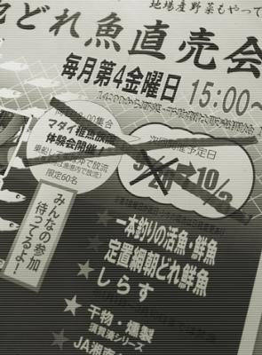 20141003地どれ魚直売会中止