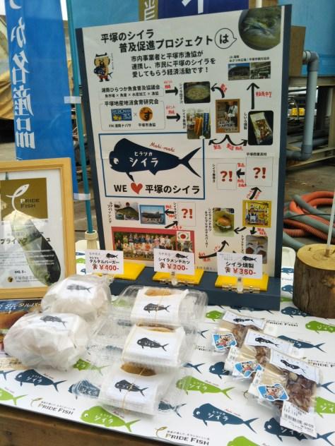 平塚のシイラPJT20181026