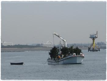 H23.3間伐材魚礁設置