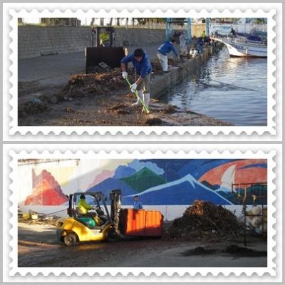 2013.4.8漁港掃除