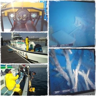 2012.11.22間伐材を使った魚礁確認ROV