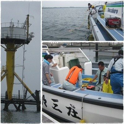20130624ROVによる魚礁確認調査