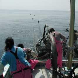 丸八丸漁風景