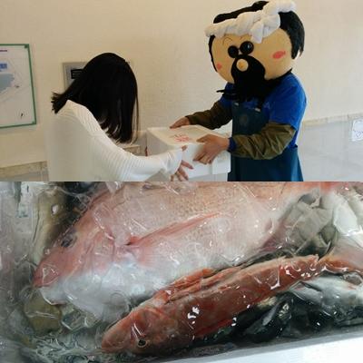 成人式2017企画 地どれ魚プレゼント