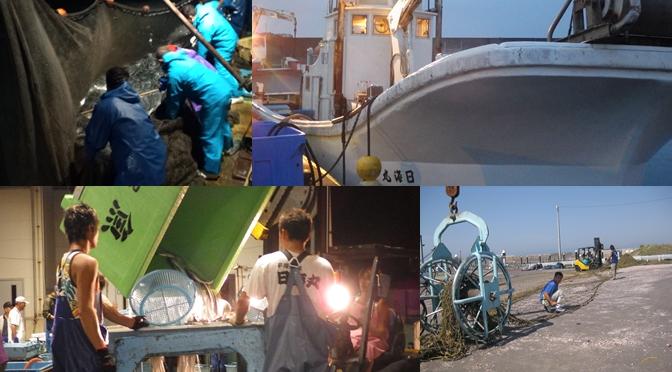 漁師募集平塚定置日海丸イメージ画像