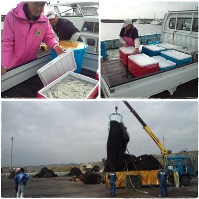2012.11.30漁港にて