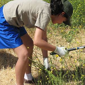 photo of teen volunteer gardening