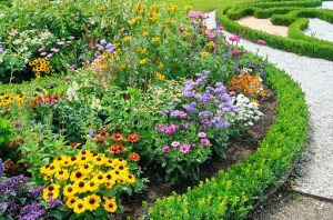 Commercial Flower Beds: What You Should Know