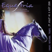 Souvenirs Festival Equestria 2008