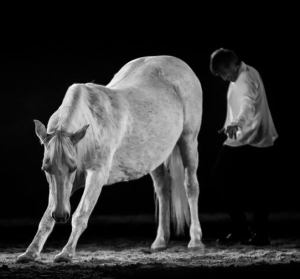 Spectacle jean-François Pignon