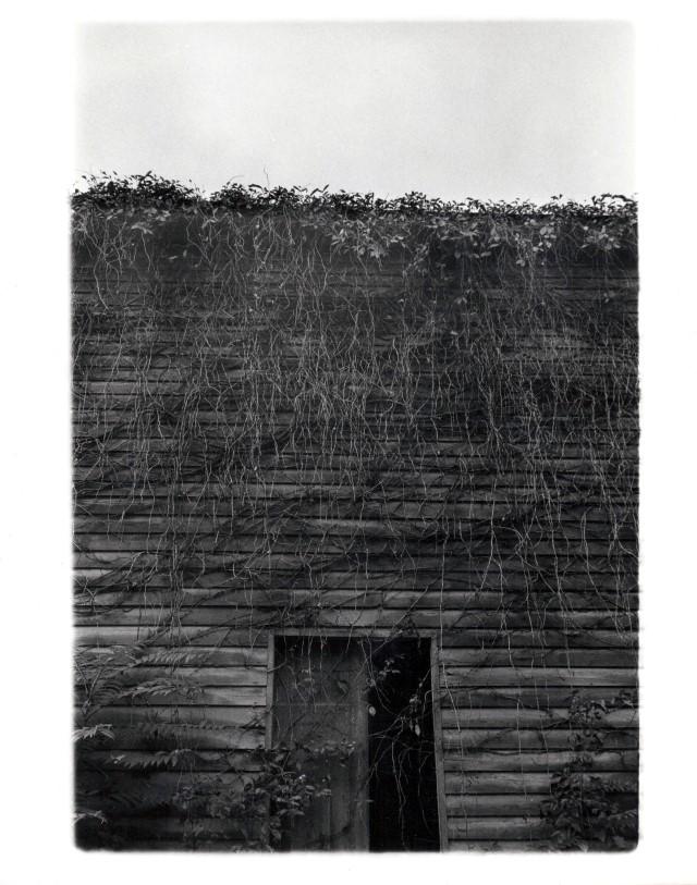 appalachian barn | charlotteville, va