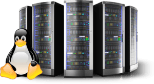 linux-shared-hosting-india