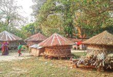Photo of ঝিনাইদহের মহেশপুরের ভবনগর গ্রামে চোখ ঘোরালেই ধানের গোলা