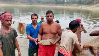 Photo of ঝিনাইদহের মাছ চাষী আবুলের টিকে থাকতে দরকার পৃষ্ঠপোসকতা