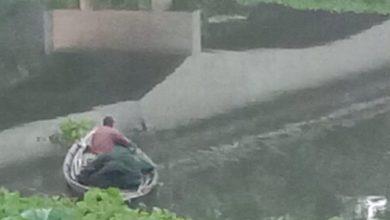 Photo of ঝিনাইদহের কুমার নদীতে নিষিদ্ধ জাল দিয়ে অবাধে মাছ শিকার/বিলুপ্তির পথে দেশীয় মাছ