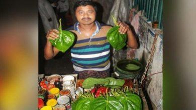 Photo of ঝিনাইদহের সুস্বাদু পানে এখন সৌভাগ্যের হাতছানি