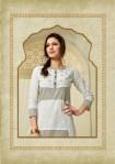parra studio saumya colorful casual wear kurtis catalog at reasonable rate