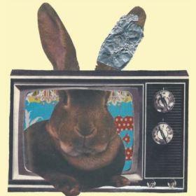 Rabbit Ears!