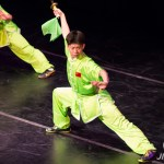 2018 New York Chinese Wushu Performance