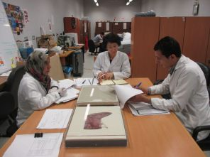 Textile team discussing with Ms.Ishii the preparation of the mount