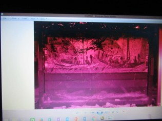 Image of the mural painting taken with UV light sources