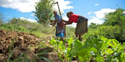 Why are banks not loaning to Agriculture