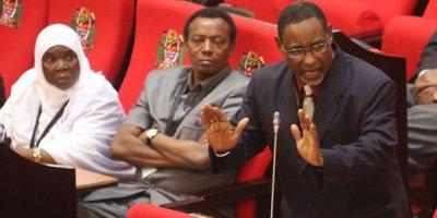 Zanzibar Ministry of Health Budget priority areas