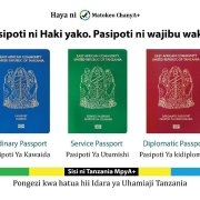 apply e-passport Tanzania