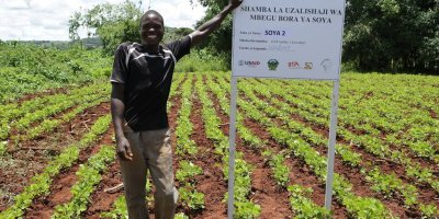 Technology for tracking better seeds