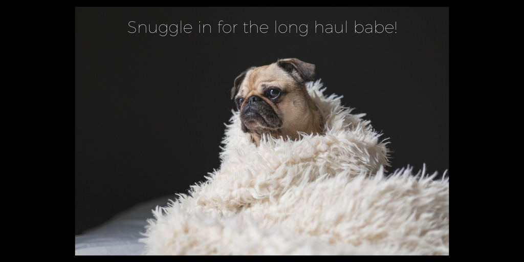 "<img src=""puppy.jpg"" alt=""puppy snuggled in blanket with text"">"