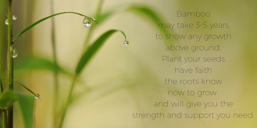 "<img src=""bamboo.jpg"" alt=""bamboo and rain drops with quote"">"