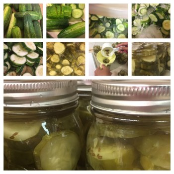 Cucumber Lime Pickles