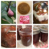 Watermelon Fig Preserves