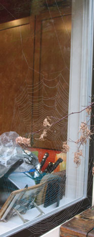 Change of Pace: Cobweb and Dishes